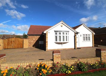 Thumbnail 5 bed detached bungalow for sale in Woodland Avenue, Hutton, Brentwood, Essex
