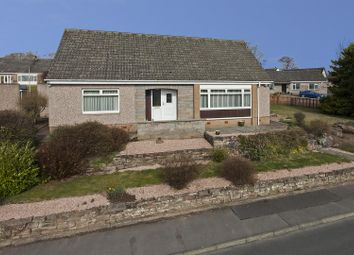 Thumbnail 4 bed detached house for sale in Spoutwells Drive, Scone, Perth