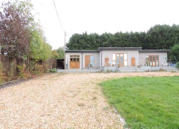 Thumbnail 4 bed property to rent in Westwood Lane, Normandy, Guildford