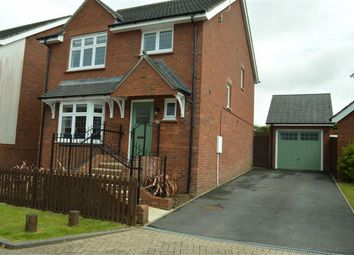 Thumbnail 4 bed detached house for sale in Napier Road, Swansea