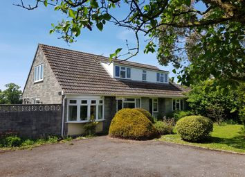 Thumbnail 3 bed detached bungalow for sale in Green Lane, Stour Row, Shaftesbury