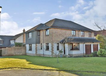 Thumbnail 5 bed detached house to rent in Springdale Road, Bieldside, Aberdeen