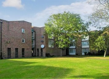Thumbnail Studio to rent in Shackleton Court, Whitley Close, Stanwell, Surrey