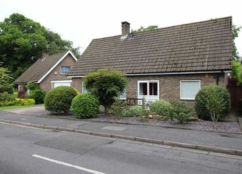Thumbnail 4 bedroom detached house for sale in Wheeldon Avenue, Derby