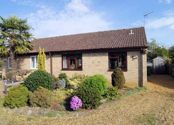 Thumbnail 2 bed semi-detached bungalow for sale in Brady Gardens, Denver