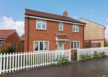 Thumbnail 4 bed detached house for sale in Primrose Place, Worthing