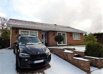 Thumbnail 3 bed detached bungalow for sale in Tyr Meddyg, Ebbw Vale