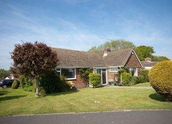 Thumbnail 2 bed detached bungalow for sale in Reedswood Road, Broad Oak, Brede