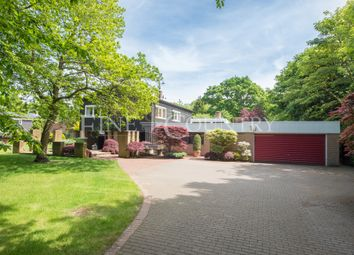 Thumbnail 4 bed detached house for sale in The Ridge, Little Baddow, Chelmsford