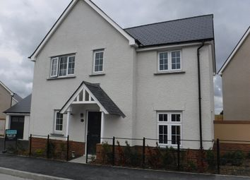 Thumbnail 4 bed detached house to rent in Cowslip Avenue, Tavistock