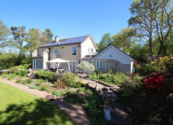 Thumbnail 4 bed detached house for sale in The Groesfford, Groesfford, Brecon