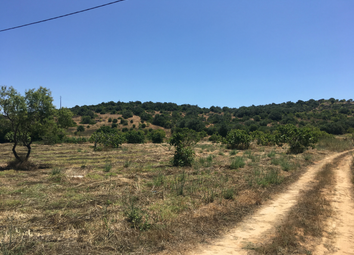 Thumbnail Land for sale in Lagos, Luz, Lagos