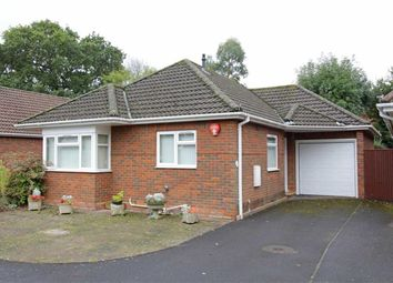 Thumbnail 2 bed bungalow for sale in Walnut Close, New Milton