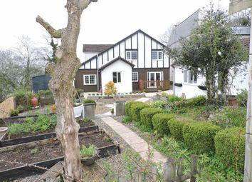 Thumbnail 4 bed detached house for sale in Tir Syr Walter, Garnant, Ammanford