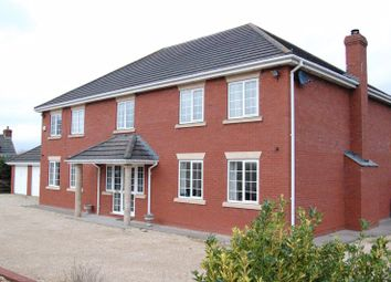 Thumbnail 4 bed detached house for sale in Grafton, Hereford