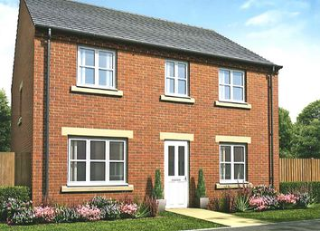 """Thumbnail 4 bedroom detached house for sale in """"The Chedworth Special"""" at Sterling Way, Shildon"""
