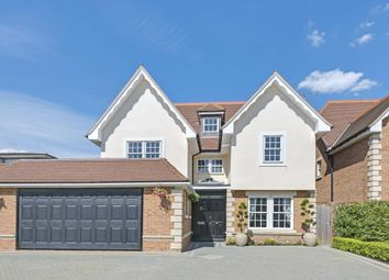 Thumbnail 6 bedroom detached house to rent in Allandale Avenue, Finchley