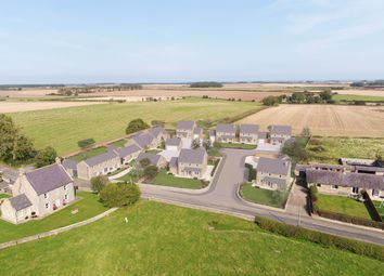Thumbnail 4 bed detached house for sale in Rennington, Alnwick