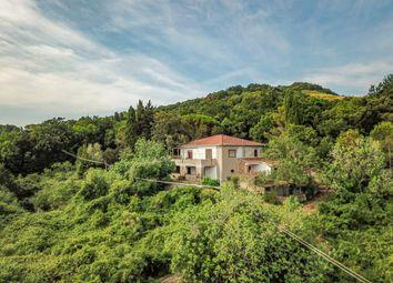 Thumbnail 4 bed villa for sale in Loc Paltratico, Rosignano Marittimo, Livorno, Tuscany, Italy