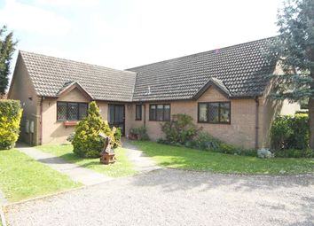 Thumbnail 3 bed detached bungalow to rent in Market Street, Fordham