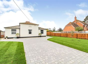 Thumbnail 3 bed detached bungalow for sale in Rosemary, Church Lane, Brantham, Manningtree