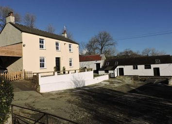 Thumbnail 3 bed farm for sale in Llangynin, St. Clears, Carmarthen