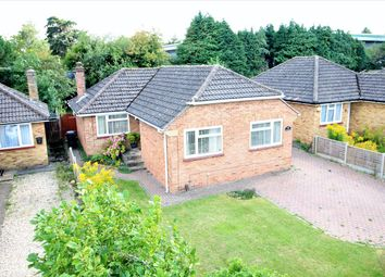 Thumbnail 3 bed detached bungalow for sale in Buckland Avenue, The Berg, Basingstoke