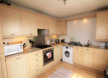 Thumbnail 2 bed flat to rent in 27E Dee Street, Aberdeen