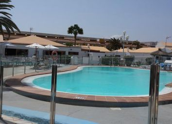 Thumbnail 1 bed apartment for sale in Alcalde Marcial Sanchez Velazquez, Caleta De Fuste, Antigua, Fuerteventura, Canary Islands, Spain
