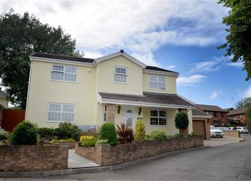 Thumbnail 4 bed detached house for sale in Llwynderw Close, West Cross, Swansea