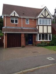 Thumbnail 4 bedroom detached house to rent in Yew Tree Close, Kettering