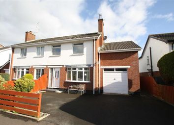 Thumbnail 4 bed semi-detached house to rent in Millbrook Drive, Ballynahinch, Down