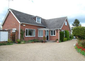 Thumbnail 5 bed detached house for sale in Old Norwich Road, Ipswich