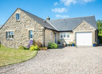 Thumbnail 3 bed bungalow for sale in The Croft, Longhoughton, Alnwick