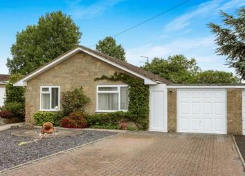 Thumbnail 2 bed bungalow for sale in Oxencroft, Shaftesbury