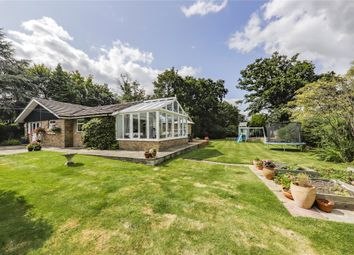 Thumbnail 4 bed detached bungalow for sale in Forest Road, Hayley Green, Bracknell, Berkshire