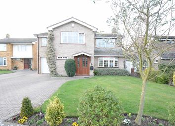 Thumbnail 4 bedroom detached house to rent in The Spinney, Orsett Village, Essex