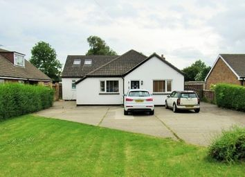 Thumbnail 4 bed bungalow to rent in Station Road, New Waltham, Grimsby