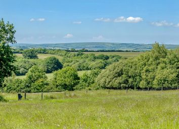 Thumbnail Land for sale in Knowstone, South Molton, Devon