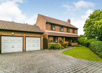 Thumbnail 4 bed detached house for sale in The Old Yews, New Barn, Kent
