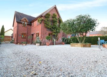 Thumbnail 5 bed detached house for sale in Boxted Road, Mile End, Colchester, Essex