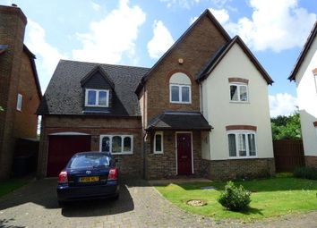 Thumbnail 4 bed detached house for sale in Kempston, Beds