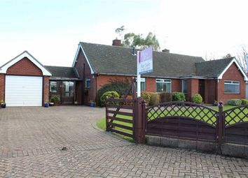Thumbnail 2 bed detached bungalow for sale in Blackbrook Lane, Sychdyn, Flintshire