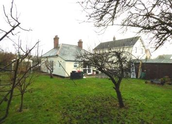 Thumbnail 3 bedroom bungalow for sale in Roydon, Diss, Norfolk