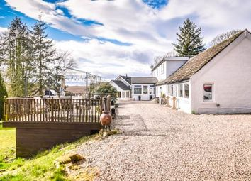 Thumbnail 7 bed detached house for sale in Roundyhill, Forfar