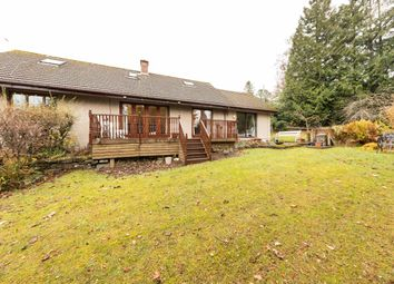 Thumbnail 5 bed detached house for sale in Bonhard Road, Scone, Perth