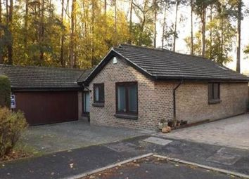 Thumbnail 4 bedroom bungalow to rent in Copthorne, Crawley