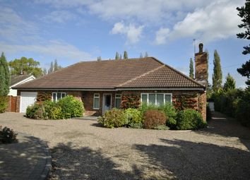 Thumbnail 2 bed detached bungalow to rent in Great North Road, Bawtry, Doncaster