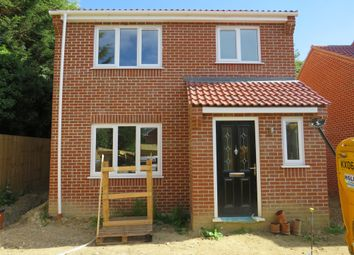 Thumbnail 3 bed detached house for sale in Long Street, Great Ellingham, Attleborough