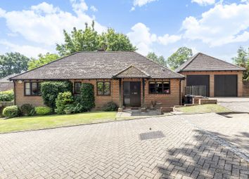 Thumbnail 3 bed detached bungalow for sale in Stile Gardens, Haslemere